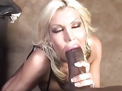 Blonde, Blowjob, Pornstar, Interracial