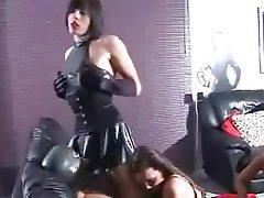 Dildo Femdom BDSM