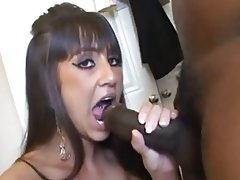 Amateur Creampie Interracial