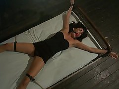Sex rough bondage tied