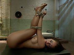 Anal BDSM Brunette Fetish