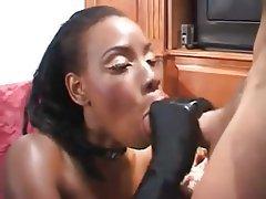 Blowjob Hardcore Interracial Pornstar