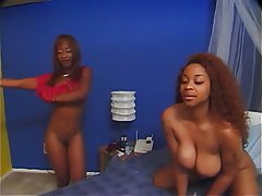 Lesbian Squirt Big Boobs Brunette Anal