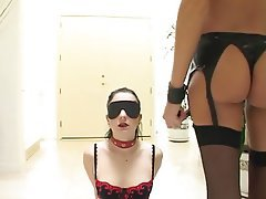 Bondage Cumshot Double Penetration Threesome
