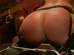 BBW BDSM Big Boobs Blonde