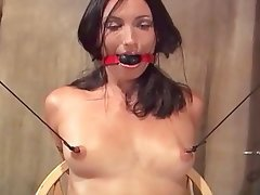 BDSM MILF Nipples Small Tits