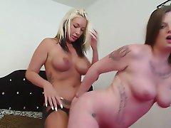 Amateur Babe Lesbian Strapon