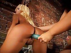 Babe Blonde Brunette Hardcore Lesbian